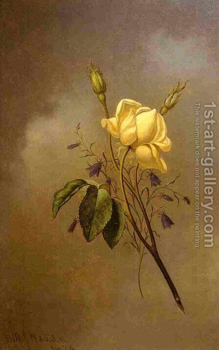 White Rose Against A Cloudy Sky by Martin Johnson Heade - Reproduction Oil Painting