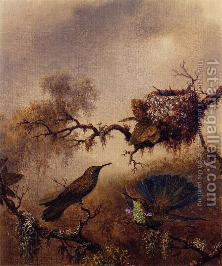 White Vented Violet Eared by Martin Johnson Heade - Reproduction Oil Painting