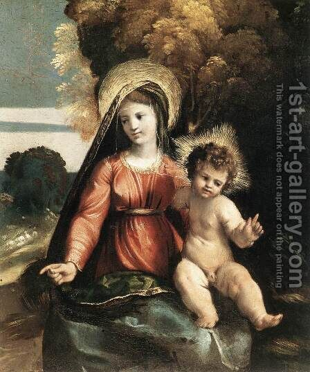 Madonna and Child c. 1525 by Dosso Dossi (Giovanni di Niccolo Luteri) - Reproduction Oil Painting