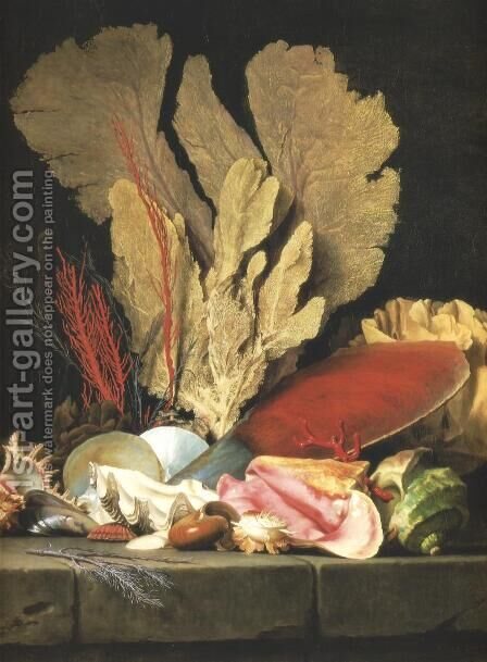 Still-Life with Tuft of Marine Plants, Shells and Corals 1769 by Anne Vallayer-Coster - Reproduction Oil Painting